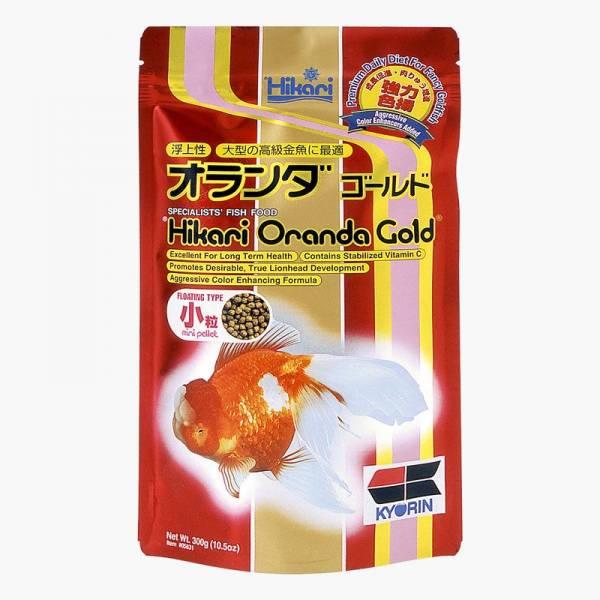 Hikari Oranda Gold